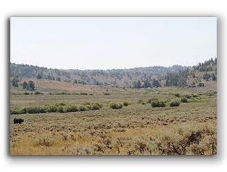 Ranches for Sale in Casper WY