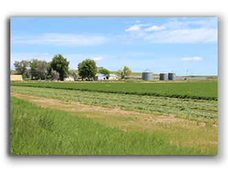 Wyoming Ranches for Sale Hay Ground