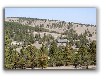 property for sale in wyoming 4