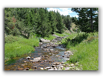 wyoming ranch for sale 5
