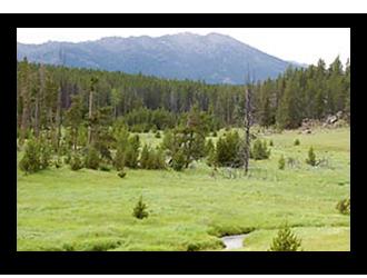 Doyle-Creek-Mountain