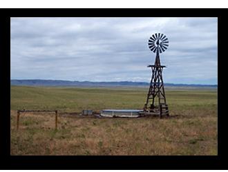 Jay-Em-Grass-Pasture