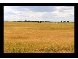 Sioux-Farm
