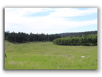 Property and acreages for sale in wyoming