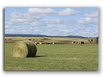 Wyoming Ranches and Farms for sale