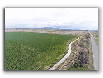 Farm for Sale in Bog Hron County WY