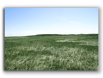Lusk WY Ranches for Sale