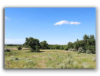Hunting Ranches for Sale in Wyoming