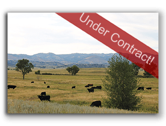 Wyo Ranches for Sale