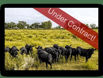 Casper Wyo Ranches for Sale