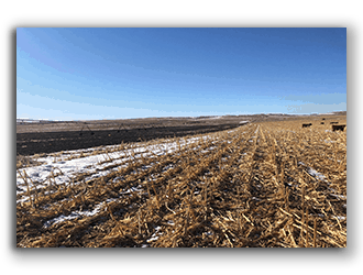 Farms for Sale in NE