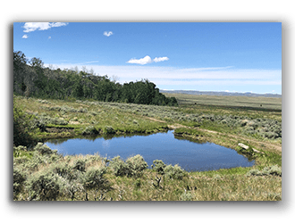 Hunting Land for Sale in WY