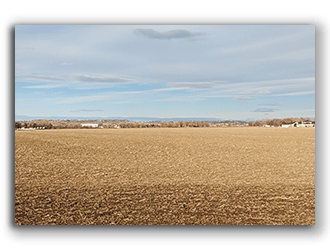 Land for Sale in Montana