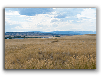 Land for Sale in WY