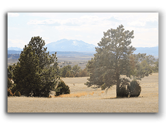 Lot for Sale in Glendo WY
