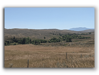 MT Ranches for Sale