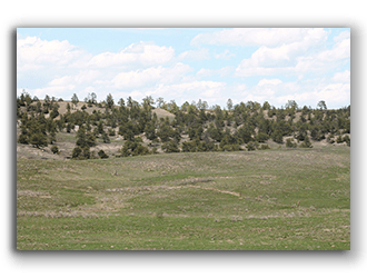 Parcels for Sale in Wyoming