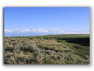 Ranches for Sale in Montana