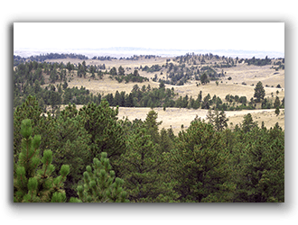 Ranches for Sale in Wyoming and Montana